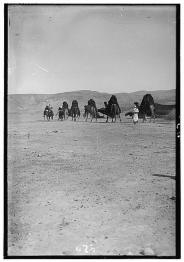 Library of Congress Photo - Bedouin Wedding Processional
